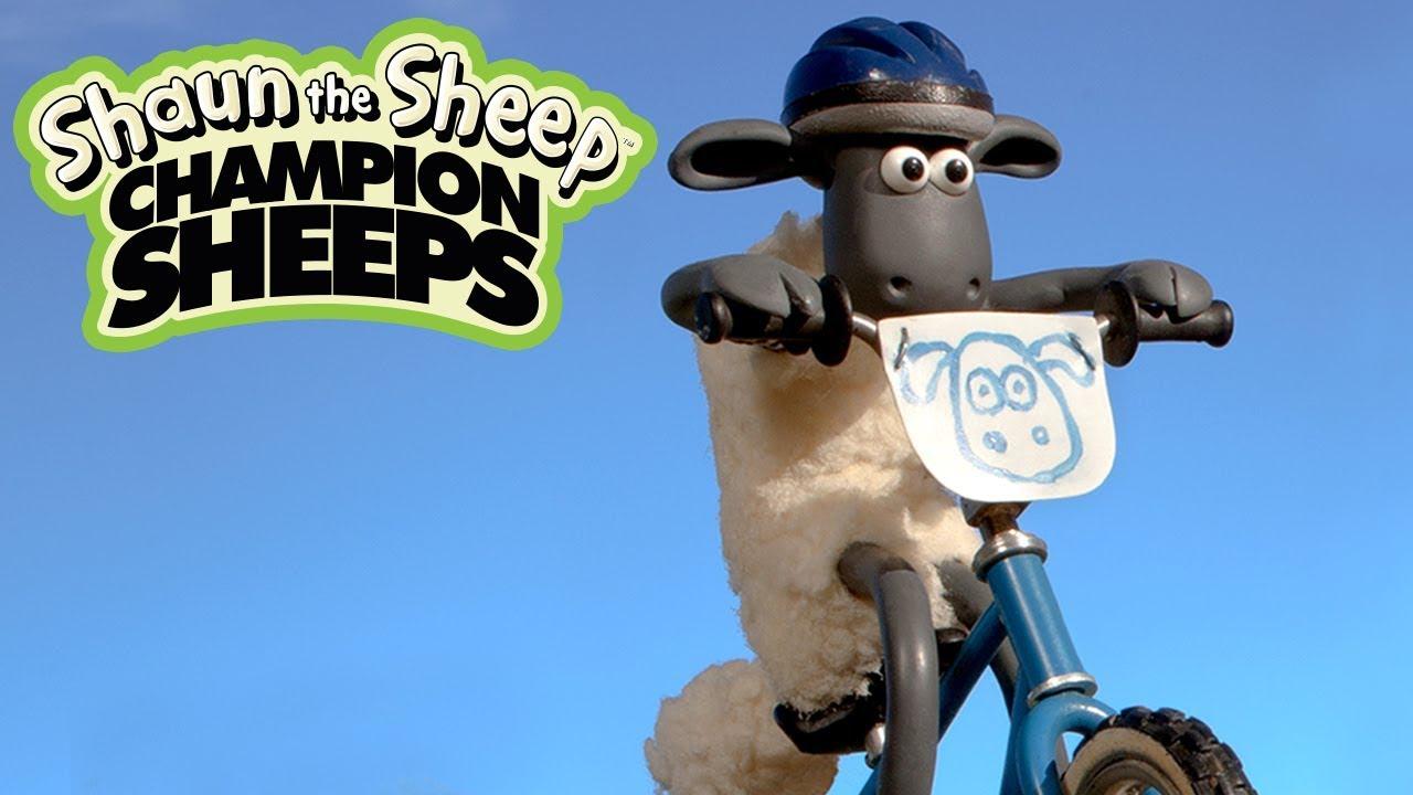 Xe đạp mạo hiểm BMX | Championsheeps | Những Chú Cừu Thông Minh [Shaun the Sheep]