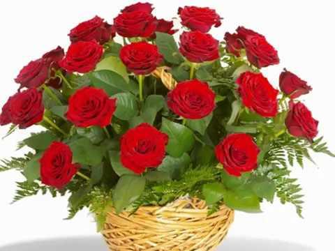 Красные розы. С днем рождения!