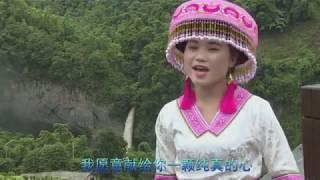 [MV]: 黄英 Huang Ying - Kheev Lam Koj Tsis Ncaj Ncees, Ntxhais Tab Yeem Ua Koj Nyab 假如你不信邪教 阿妹愿作你新娘