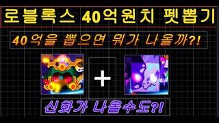 [로블록스 펫시뮬레이터X] 40억 코인 뽑기!!