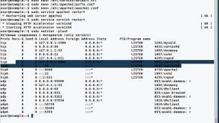 видео Оптимизация кеширования сайта браузерами и прокси-серверами