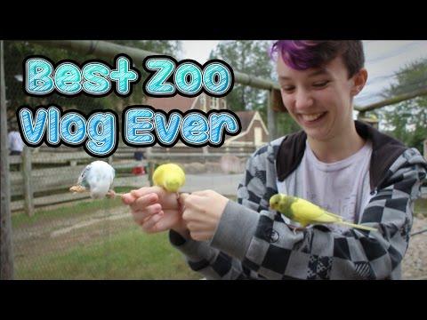 best-zoo-vlog-ever