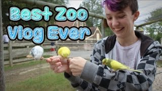 Best Zoo Vlog Ever