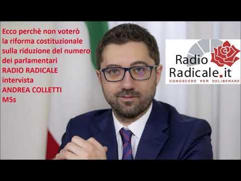 Ecco Perchè Non Voto La Riforma Sul Taglio Dei Parlamentari: Intervista Ad Andrea Colletti (M5s)
