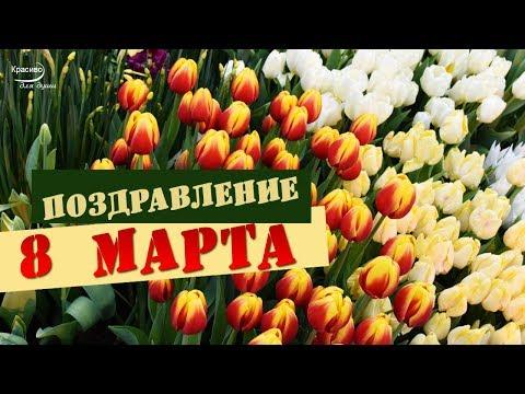 С ПРАЗДНИКОМ 8 МАРТА! Весенние цветы и красивое поздравление от всей души!