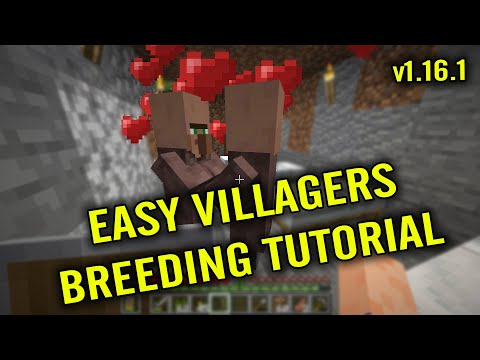 how-to-breed-villagers-in-minecraft-1.16.1