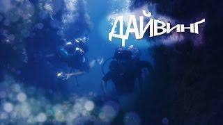 Дайвинг в Орджоникидзе - Чёрное море