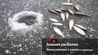 Зимняя рыбалка  Ловля плотвы и окуня на мормышку(Зимняя рыбалка - единственное увлечение рыбака в январе. С приходом морозов о спиннинге можно забыть. Остае..., 2017-01-12T09:39:22.000Z)
