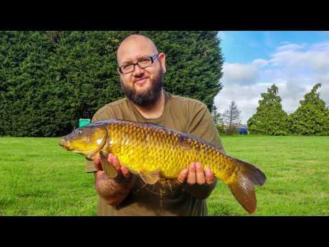 Carp Fishing - NetCam 30/7/17
