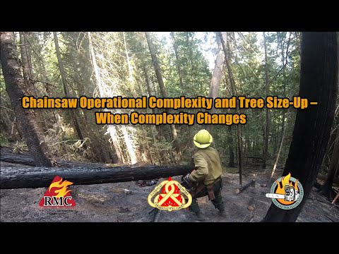 Chainsaw Operational Complexity And Tree Size-Up - When Complexity Changes