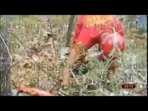 Jenni Rivera lugar del accidente por MILENIO - YouTube