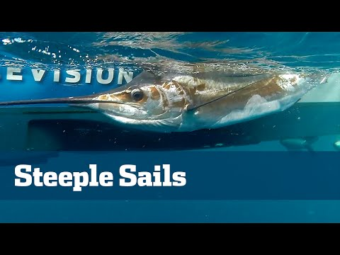Florida Sport Fishing TV - Kite Fishing Sailfish South Florida - Season 05 Episode 10