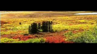 Pure Sound - Dempster Highway