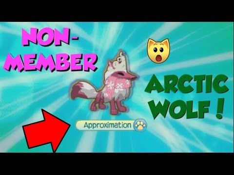 How to Be A NON-MEMBER Arctic wolf! 2018 WORKING ll Animal Jam