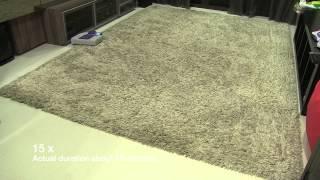 """Neato Robotic Vacuum XV-21 cleaning a 1.5"""" pile carpet"""