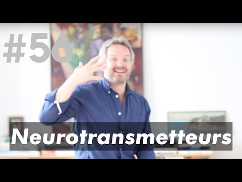 Les Neurotransmetteurs (dopamine, acétylcholine, GABA, sérotonine)