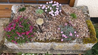 Making an Alpine Crevice Garden - and what happened next