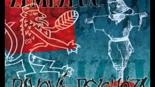 Davová psychóza - Beds are burning (cover Midnight Oil,2014)