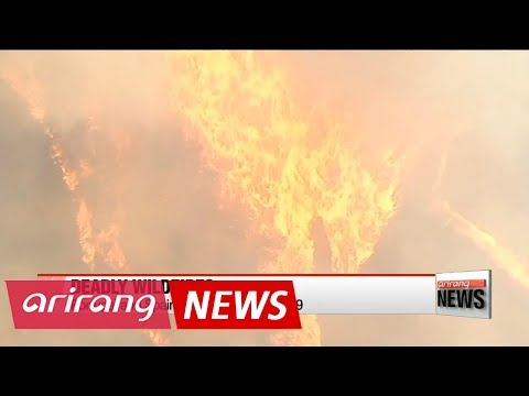 Portugal and Spain wildfires kill at least 39