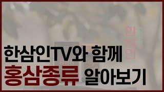 """(농협홍삼 한삼인) 3. 홍삼 종류 소개 """"홍…"""