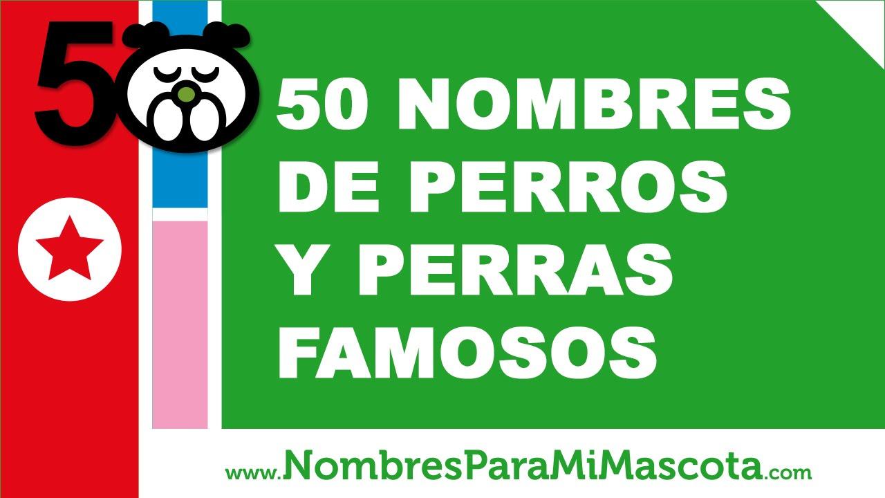 50 Nombres De Perros Y Perras Famosos Los Mejores Nombres De Perros Www Nombresparamimascota Com Youtube
