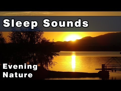 Tranquil Sounds of Nature at Night: Sounds To Sleep To, Sound of Crickets, Tree Frog Sounds At Night