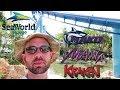 SeaWorld Orlando 2018. Manta, Kraken Unleashed, & Mako Roller Coaster Reviews. Zero-G Vlog #5