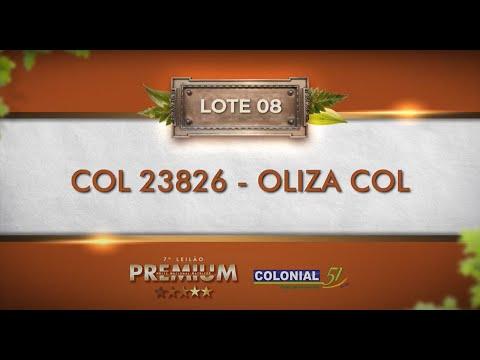 LOTE 08   COL 23826