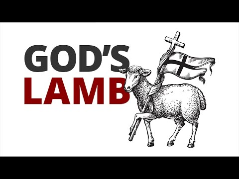The Vortex — God's Lamb