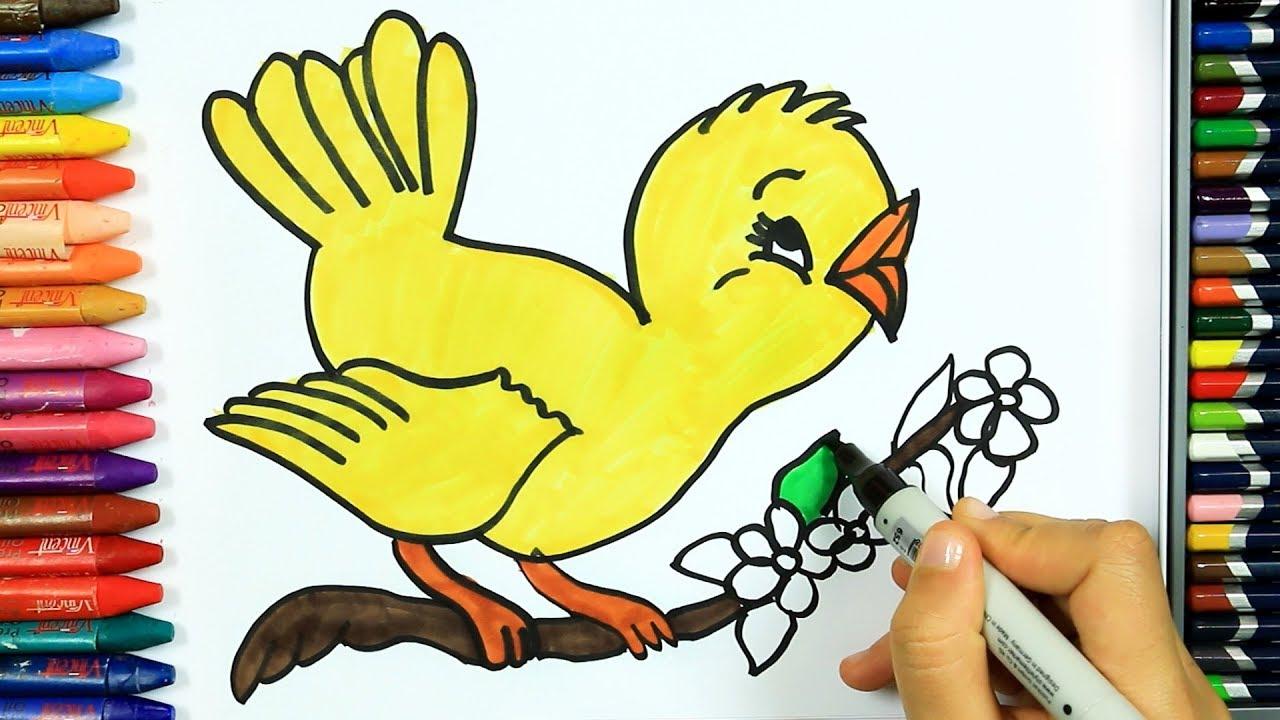 Wie Zeichnet Man Vogel Ausmalen Kinder Hd Kindervideos Malen