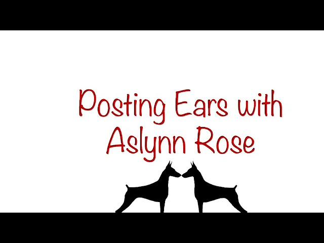 Ear Posting with Aslynn Rose