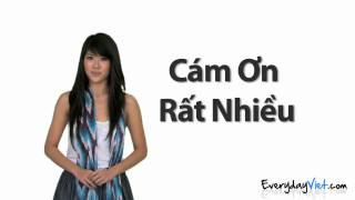 Learn Vietnamese: Lesson 1: Thank You, You're Welcome, and No Problem in Vietnamese