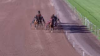 Vidéo de la course PMU PRIX DE MARSEILLE-BORELY