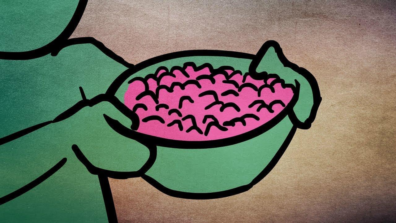 Cichyżarcik |#36| - Niebieskie jagody
