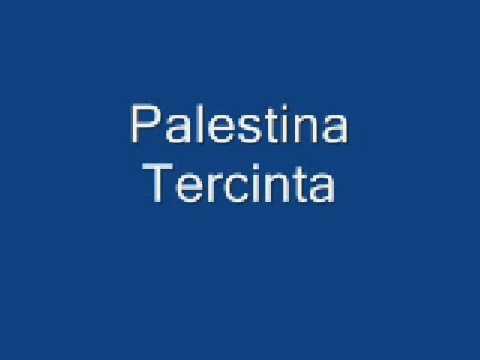 Palestina Tercinta - Shoutul Harakah