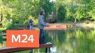 Жителям столицы предлагают порыбачить прямо в Москве - Москва 24