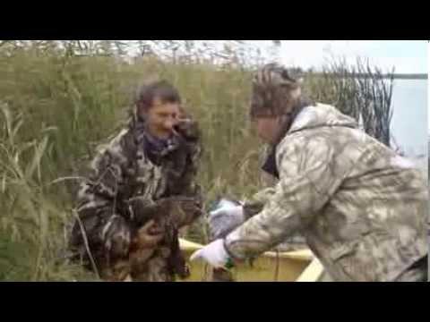 Омск озеро Батакуль