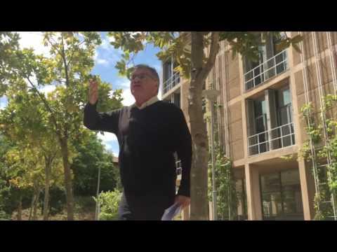F(R)ee Reform: Dennis Davis
