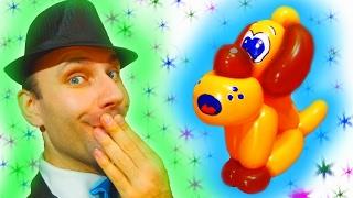 Крассивый собака из шаров шдм (твистинг) ★ dog balloon