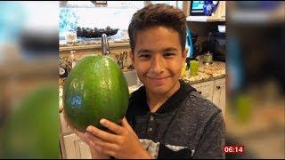 5.6 pound avocado wins Guinness World Records title (fun story) (USA) BBC News 12th October 2019