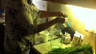 Рецепты.Как приготовить папоротник ?