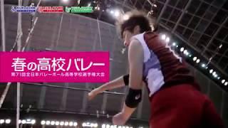 ジャパネット杯春の高校バレー2019・第71回全日本バレーボール高等学校選...