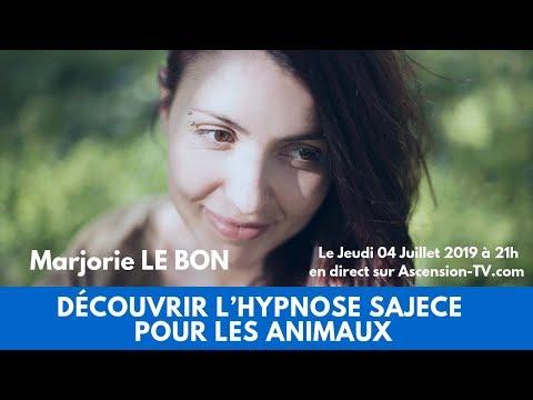 Découvrir l'Hypnose Sajece pour les animaux avec Marjorie LE BON le 04/07/2019 à 21h