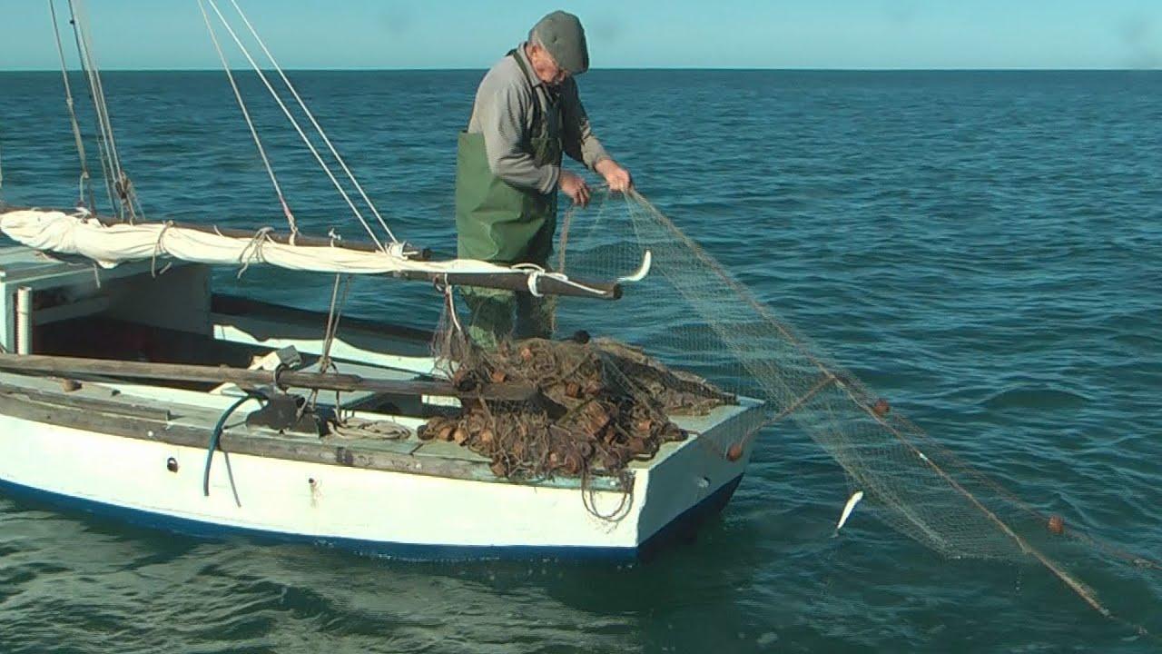 Italian net fishing youtube for Fishing in italy