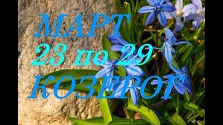 КОЗЕРОГИ. ПРОГНОЗ на НЕДЕЛЮ с 23 по 29 МАРТА 2020 г.