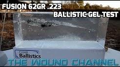 Fusion 62gr 223 Ballistic Gel Test
