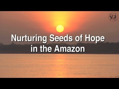 Nurturing Seeds of Hope in the Amazon: Environmental Education in Action
