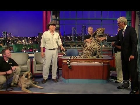 Turkish Dog Kangal Protects The Cheetah From Extinction ( The late show ) !!!