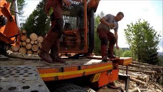 HP-Holz   Starkholz in Oberzeiring