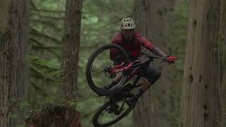 Michael Sousa's In Our Nature  - 2019 Dirt Diaries Entry
